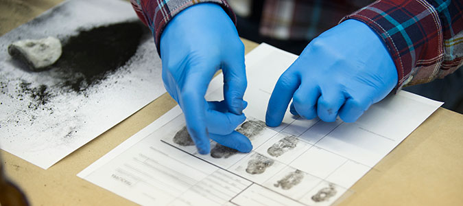 Forensic Science Marian University Marian University