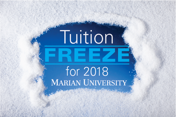 Frozen Tuition Snow page 11-17
